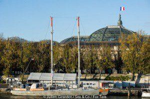 tara a Paris 2