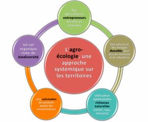 Agro-e_cologie-c9865