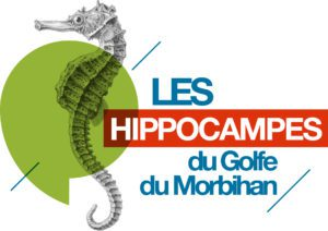LOGO_LES_HIPPOCAMPES_GENERIQUE_SRVB